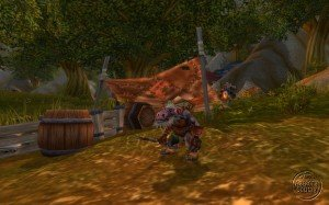 northshire_028-300x187