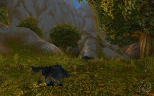 northshire_036-300x187